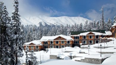 Photo of 7 Super Romantic Things to Do in Gulmarg