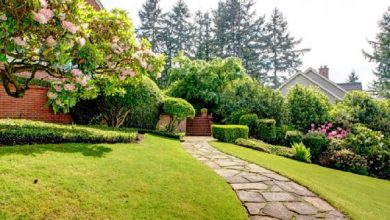 Photo of Some Landscape Designs That Can Help You For Your Home Improvement