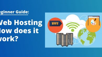 Photo of What is Domain Hosting & How it Work: Beginner's Guide