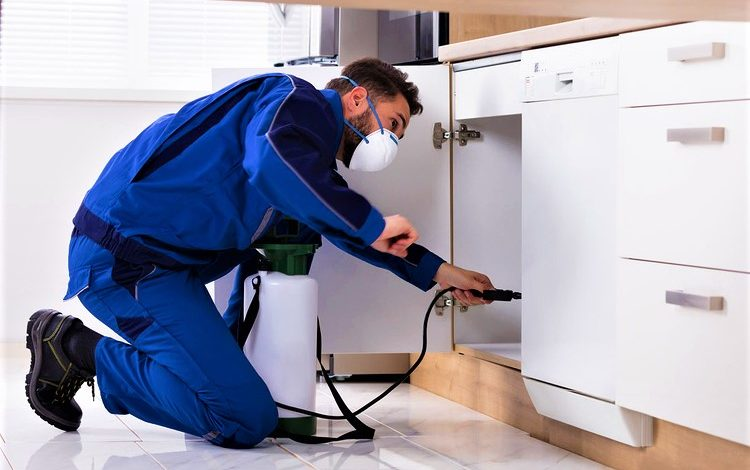 Eco Friendly Pest Control Methods By Govt. Approved Pest Control Company