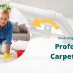 Cleaning Lessons from a Professional Carpet Cleaner - Ryan Carpet Cleaning