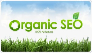 Photo of Organic SEO Services Find the Best Guest Post Opportunities