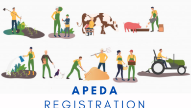 Photo of How to get APEDA Registration?