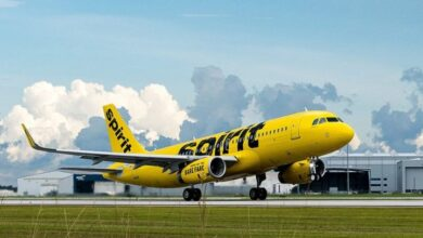 Photo of Think About the Reservations, Pet Policy, Infant strategy and Classes of Spirit Airlines