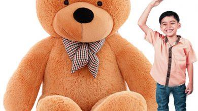Giant-Brown-Teddy-Bear-5ft-6ft-7ft